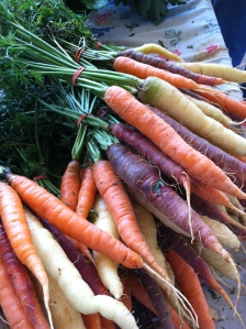 Multi colored Carrots (I bought these!)