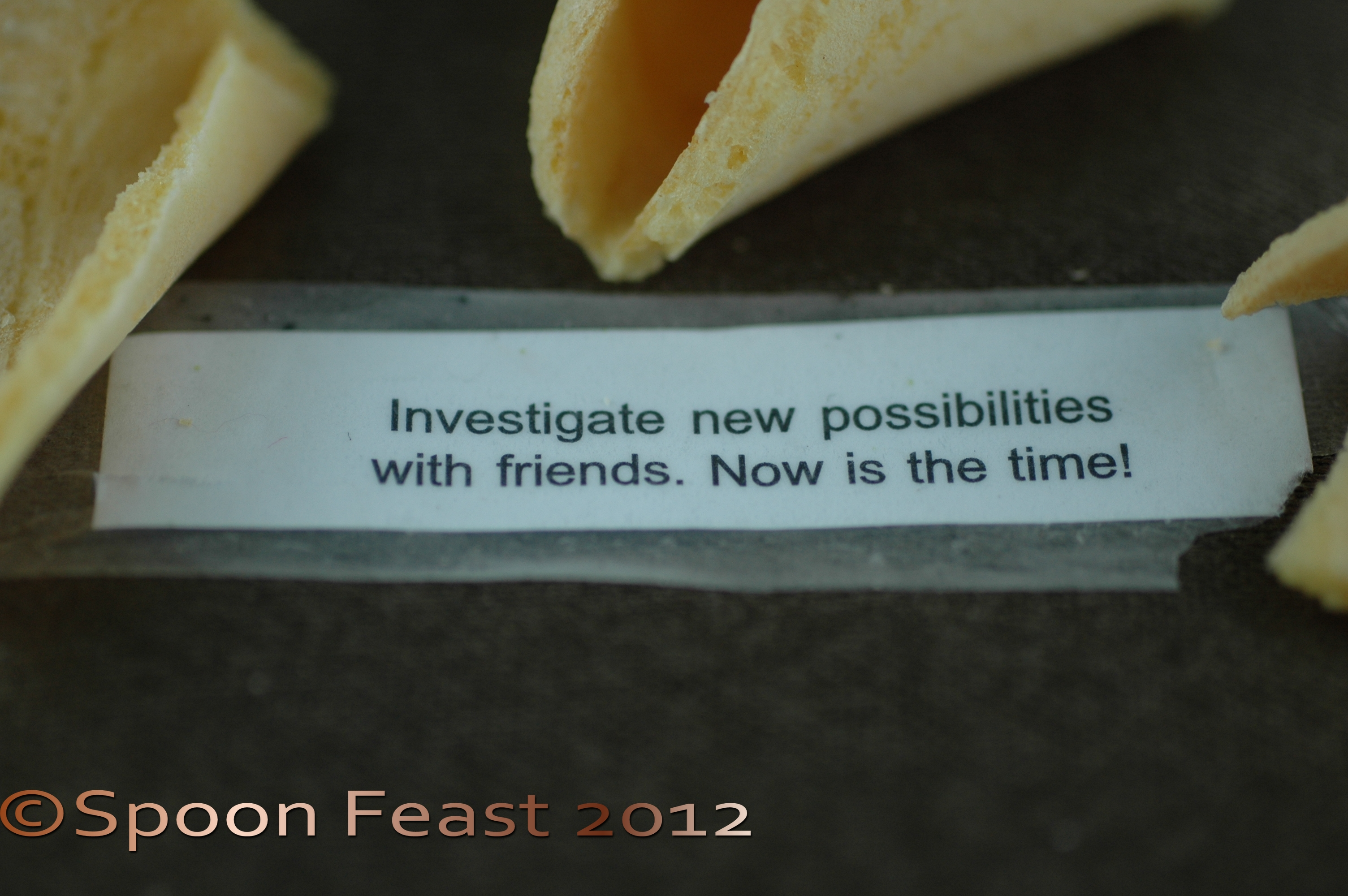 Chinese Fortune Cookies – How do they know? | Spoon Feast