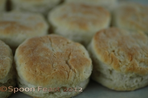 Basic Buttermilk Biscuits