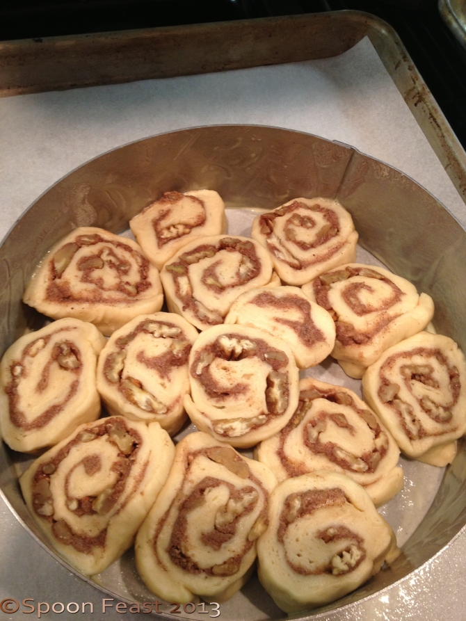 Cinnamon Rolls ready to rise