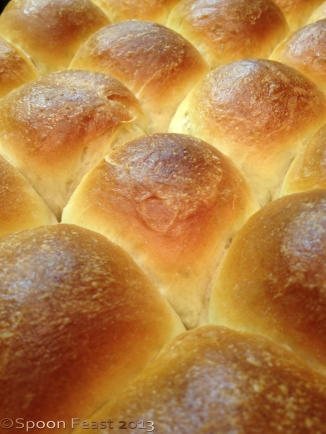 Baked Yeast Rolls