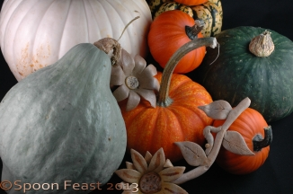 These various squash found their way into my basket while shopping this weekend.