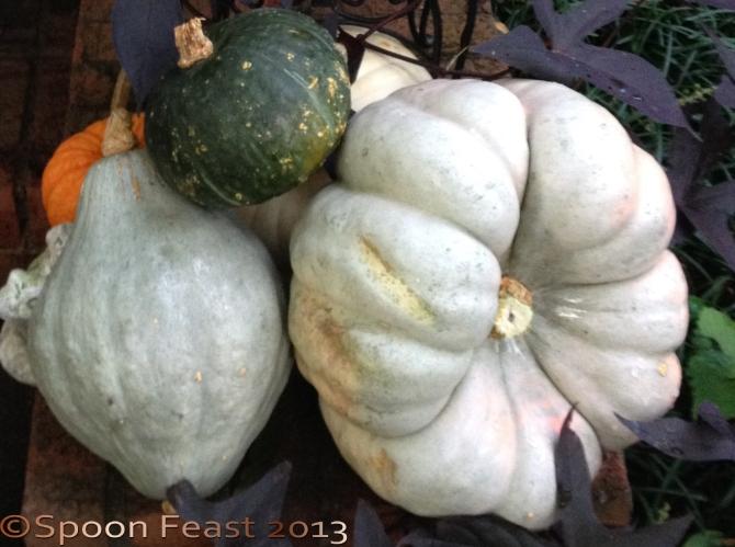 Choose a well-indented pumpkin