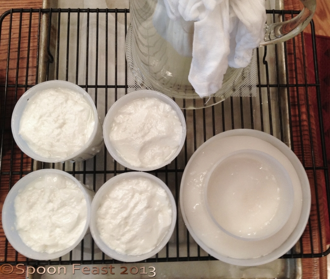 Goat Cheese Draining