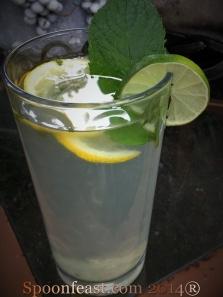 Lemon Detox Challenge!